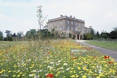 A Wild Flower Meadow Planted By Prince Charles At Highgrove, Country Home To The Wales Family