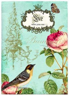 bikari: Kafes / Kuş Dekupaj Desenleri