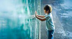Diversos pesquisadores têm investigado cuidadosamente casos de crianças que relatam memórias de vidas passadas. Foram verificados muitos casos em que os detalhes dados por crianças (algumas vezes c...