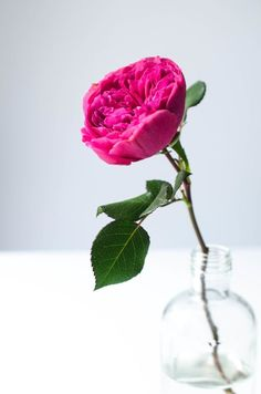 May the beauty of the flowersremind us of the beauty of our loved one's spirit ___ ♥ ♥