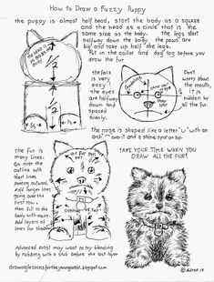 How To Draw A Fluffy Furry Puppy Worksheet