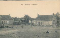Carte postales anciennes Biches