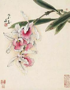 鄭乃珖寫 Chinese Painting Flowers, Orchids Painting, Japanese Art Styles, Japanese Drawings, Japan Painting, China Painting, Watercolor Artwork, Watercolor Flowers, Botanical Art