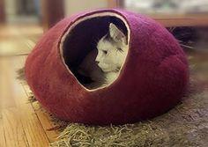 Cat Bed, House, Cave, igloo, 100% Handmade , Kivikis - Burgundy Dark Large Kivikis http://www.amazon.com/dp/B00Q2WYYSO/ref=cm_sw_r_pi_dp_N-yUwb1EZCNTY 7 each