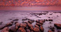 Shark Bay en Australie - Se baigner au milieu de fossiles vivant ! Au point le plus à l'ouest de l'Australie, Shark Bay rassemble parmi les plus anciens fossiles, les stromatolithes. Unique au monde, cette baie est classée au Patrimoine de l'UNESCO - #easyvoyage #easyvoyageurs #clubeasyvoyage #plage #beach #paradis #paradise #holiday #summer #ete #holidaytravel #vacances #voyage #traveler #traveling #voyageur #tourisme #tourism #australie #australia #sharkbay #unesco #mer #sea #ocean