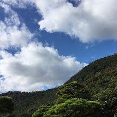 【myfavorite___114】さんのInstagramをピンしています。 《🌳☁️ _ #無加工#空#カコソラ#晴れ #自然#雲#森#女子旅#旅#森 #大自然#素敵#ちっぽけ#大空 #緑#青#白#秋晴れ#冬の訪れ #bluesky#mountain#sun #japan#sky#followme》