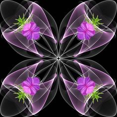 Share Your Favorite Gifs Beautiful Gif, Beautiful Flowers, Gif Bonito, Cool Optical Illusions, Flowers Gif, Love You Images, Good Night Wishes, Good Morning Flowers, Illusion Art
