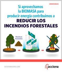Si aprovechamos la biomasa para producir energía, contribuimos a reducir los incendios forestales.