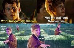 The Maze Runner Meme   Newtosaurs<< sign me up, I wanna be a runner. Let the newtosaurs come