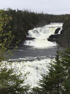 Bakers Brook Falls (Gros Morne National Park) - All You Need to Know BEFORE You Go - Updated 2020 (Gros Morne National Park, Newfoundland and Labrador) - Tripadvisor Gros Morne, Newfoundland And Labrador, Trip Advisor, Waterfall, National Parks, Articles, Photos, Travel, Outdoor