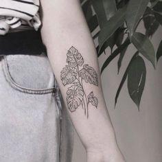Monstera tattoo Tattoos Skull, Forearm Tattoos, Leaf Tattoos, Body Art Tattoos, Small Tattoos, Sleeve Tattoos, Tatoos, Medium Tattoos, Pis Saro Tattoo