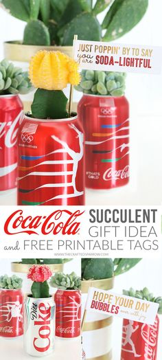 DIY Coca-Cola Succulent Gift Idea with Free Printable Tags  |  #ThatsGold @cocacola [ad]