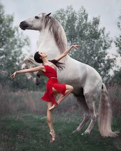 """A truly beautiful photo of ballet royalty and equine excellence. Principal dance… A truly beautiful photo of ballet royalty and equine excellence. Principal dancer Anastasia Limenko with the extraordinary Andalusian horse """"Brioso"""" Photo ©."""