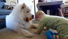 Babysitter?