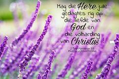 Mag die Here julle gedagtes rig op die liefde. #gedagte #rig #liefde #volhard #Christus #God #Here #Vader #Jesus #JesusChristus #LiefdevirJesusChristus