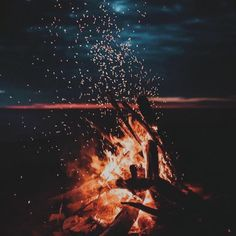"""The Sanctuary Yala on Instagram: """"Day dreaming into the campfire surrounded by the Sri Lankan wild.. bookings@yalasanctuary.com www.yalasanctuary.com  Come join us for the…"""" Airplane View, Join, Camping, Day, Instagram, Campsite, Outdoor Camping, Campers"""