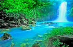 Rio Celeste is one of the seven wonders of Costa Rica. The river gets its coloring from a mix of sulfur and the calcium carbonate. There are a couple hotels near by if you are looking to stay the night.