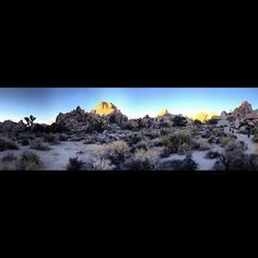 Panoramic of Hidden Valley trail Joshua Tree National Park CA #california #cactus #landscape #panoramic #joshuatree #hiddenvalley #geology #sunset