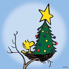 Woodstock with Christmas tree in his birdnest. Woodstock with Christmas tree in his birdnest. Peanuts Christmas, Charlie Brown Christmas, Noel Christmas, Vintage Christmas, Xmas, Cartoon Christmas Tree, Snoopy Feliz, Snoopy Und Woodstock, Woodstock Bird