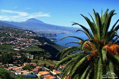 En general los paisajes en Tenerife son espectaculares. Foto - Vista panorámica de la Costa de Acentejo, al fondo La Rapadura