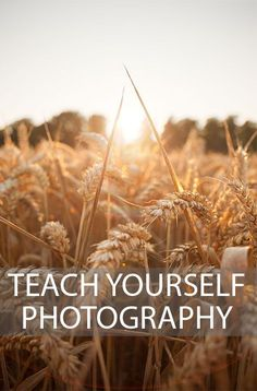 A look at the most important things to study when starting to learn photography, & how to ensure this learning sinks in. Written by Discover Digital Photography January 4th, 2015. _BE RESPECTFUL - Like Before you RePin _Sponsored by International Travel Reviews - World Travel Writers & Photographers Group. We write reviews documented by photos for Travel, Tourism, & Historical Sites. Tweet us @ IntlReviews - Info@InternationalTravelReviews.com - #InternationalTravelReviews…