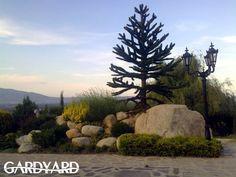 Inspiring Idea: A Hillside Garden With an Ornamental Touch - GardYard