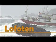 Lofoten : -The magic Islands in Norway, one of the worlds best destinations Lofoten, Safari, Magic Island, Norway Travel, Fishing Villages, Inspirational Videos, World Famous, Amazing Destinations, Natural