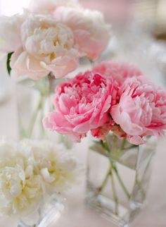 Peony Centerpiece   Bella Rosa Floral Design Love how simple these are, we could wrap the nautical rope around the glass maybe? @Heather Creswell Creswell Brinley
