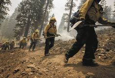 Thin Green Line, Wildland Firefighter, Blue Mountain, Firefighters, Carpenter, Factors, Geography, Las Vegas, Stage