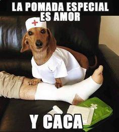 Imagenes de Humor #memes #chistes #chistesmalos #imagenesgraciosas #humor www.megamemeces.c... ➦➦ http://www.diverint.com/imagenes-comicas-frase-vuelve-locas