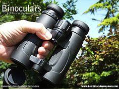 Grip on the open bridge body Celestron Granite Binoculars Binoculars, Granite, Lenses, Bridge, Glass, Drinkware, Granite Counters, Corning Glass, Bro