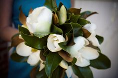 Magnolias are my favorite tree, and this must be my bouquet.. now.. I want a December wedding, so this might be tricky. Good thing I have 289072834 years to plan.