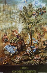 """Gnome Grown Poster - $7.99  Gnome Grown Poster has a village of gnomes harvesting marijuana, pot plants, with blue winged fairies adding magic dust, a Jamaican reggae gnome keeping tally, a zz top gnome, a wizard gnome, a caterpillar smoking from a pipe and two blue turtles. Measures 24"""" x 36""""."""