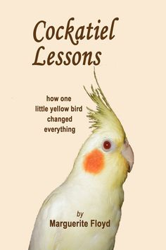 Buy Cockatiel Lessons / book / parrots / birds / pets / cockatiels by lexlights. Explore more products on http://lexlights.etsy.com