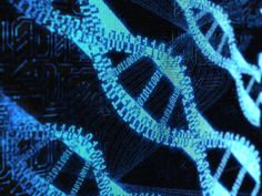 There are many characteristics of the DNA code that make it very sophisticated.