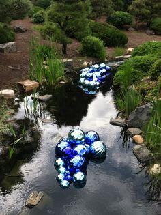Chihuly Glass Sculpture at Denver Botanic Gardens