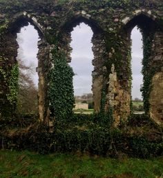 Ruins of Ancient Church, in Waterford Country. Photos by the Irishaesthete. An article accompanies the photos regarding the foundation/history and eventual dissolution of this church. Waterford Ireland, Beautiful Ruins, Beautiful Places, Slytherin Aesthetic, Chronicles Of Narnia, Ancient Ruins, Fantasy Landscape, Fairy Land, Abandoned Places