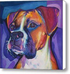 Square Boxer Portrait Canvas Print / Canvas Art - Artist Robyn Saunders, http://www.amazon.com/dp/B0069QSJLG/ref=cm_sw_r_pi_awd_i-qjsb1CK625N