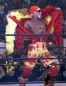 In the 80's and 90's Hulk Hogan was an icon. During pro wrestling's glory days, he was the king who boldly sat upon his throne of ripped shirts and steroids. So what'cha gonna do, brother, when the official facial hair of Hulkamania runs wild on you?