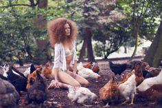 fashion, garden, chickens