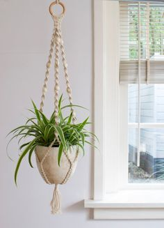 Macrame Plant Hanger / Plant Holder / Hanging Planter / Home