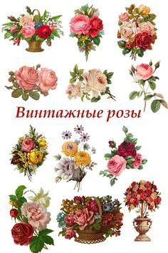 скрап-набор цветы png для открыток прозрачный фон