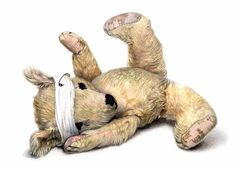 Old Bear with bandage by Jane Hissey, some of my favorite children's books Life Quotes Pictures, Picture Quotes, Picture Books, Children's Book Illustration, Animal Illustrations, One Pic, Childrens Books, Illustrators, Dinosaur Stuffed Animal
