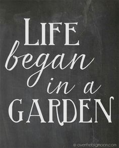 Change to Life Begins in the Garden