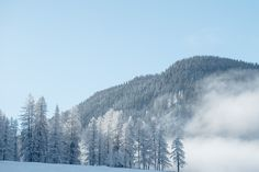 World Economic Forum, Davos, Europe, Mountains, Travel, Outdoor, Voyage, Outdoors, Viajes