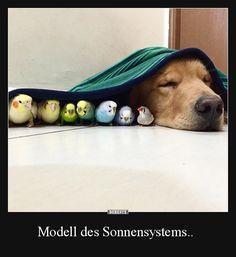 Modell des Sonnensystems.. | Lustige Bilder, Sprüche, Witze, echt lustig