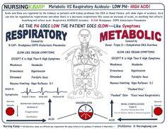 Metabolic Acidosis VS Respiratory Acidosis - All About Health Respiratory Acidosis, Respiratory Therapy, Respiratory Medications, Acute Respiratory Failure, Respiratory System, Cardiac Nursing, Pharmacology Nursing, Nursing Assessment, Nursing Documentation