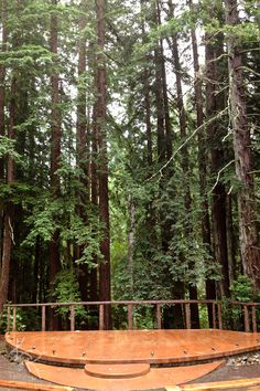 Redwood Forest Wedding Venue in Occidental CA