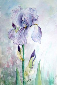 Purple Iris Watercolor Giclee Print Fine Art by CheyAnneSexton