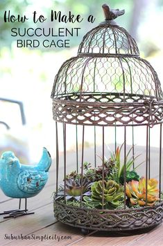 Come be inspired and see Beautiful Ways to Decorate with Succulents. Learn how to make this DIY vintage birdcage filled with faux succulents. Looks amazingly real, but no maintenance! Succulent Gardening, Planting Succulents, Container Gardening, Succulent Planters, Suculentas Diy, Cactus Y Suculentas, Diy Hanging Planter, Diy Planters, Planter Ideas